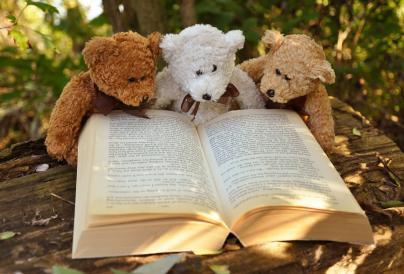 3 teddies with a book